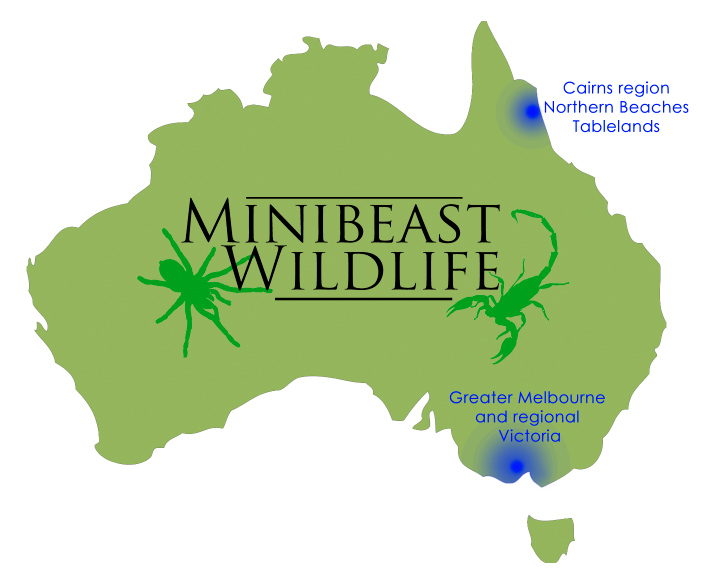 Minibeast educational service areas