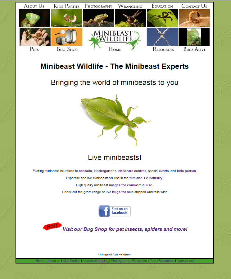 The old Minibeast Wildlife website home page 2008 - 2015.