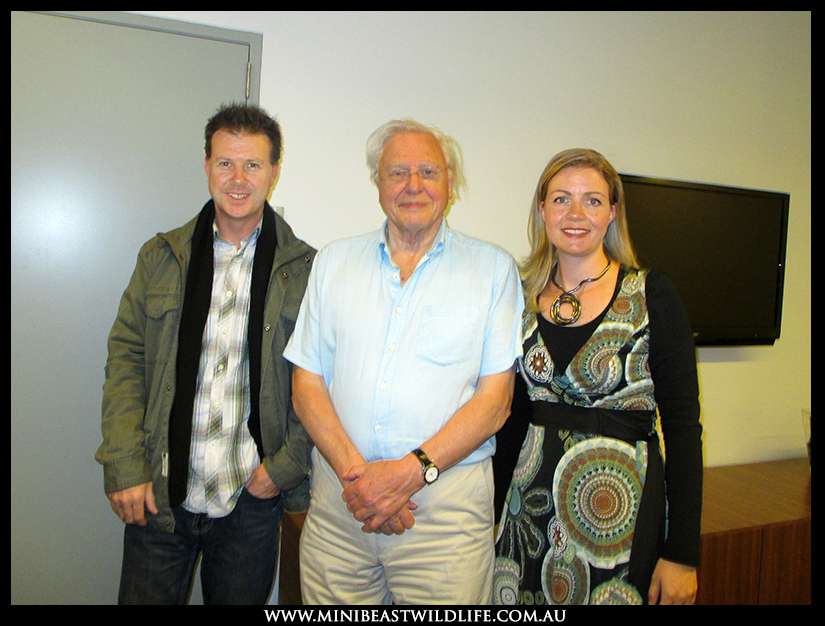 David Attenborough 800